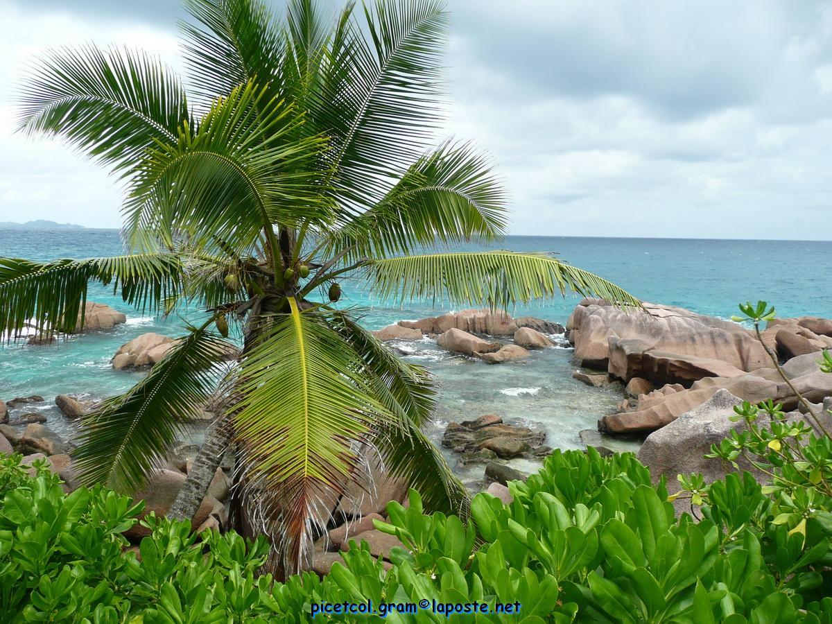 P138_seychellesxx022010